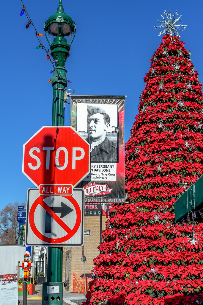 Little Christmas Italy.Little Italy Christmas Tree Piazza Basilone Little Italy