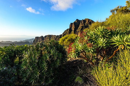 tenerife trail atardecer spain sky sun sol sunrise españa s nikon d5100 landscape paisaje puesta paseo montaña mountain tokina naturaleza nature