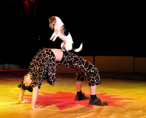 Zippos Circus UK, 2008 | by dirkjanranzijn