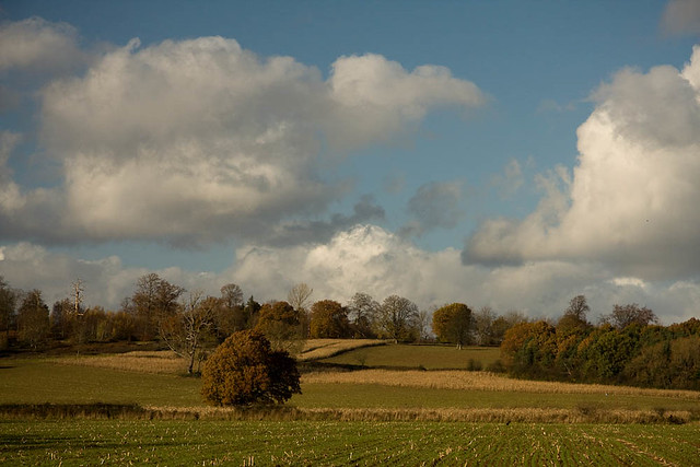 the Kent countryside near Penshurst