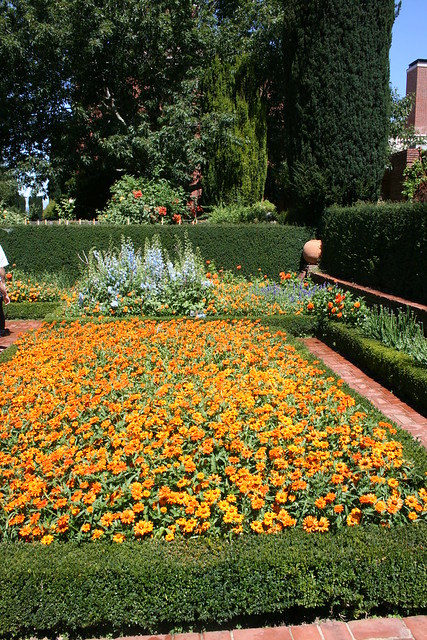 Filoli Gardens - Densely Planted Bed