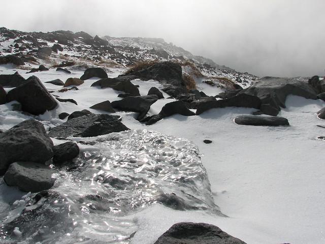 High-Altitude Ice Creature