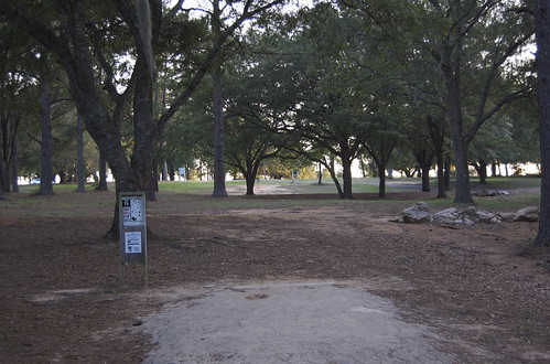 park trees landscape tallahassee discgolf tombrownpark