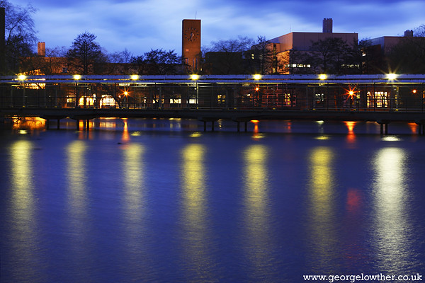 York University Campus Lake in the Evening