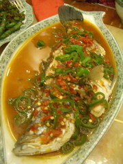 Sichuan Dining Room fish   by mutemonkey