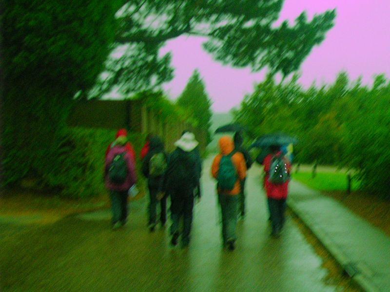 Les parapluies des Marcheurs Samedi Balcombe Circular via Ardingley Resrvoir Taken with purplecam.