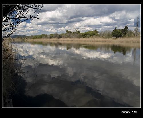 paisajes nwn deltadelllobregat abigfave aiguamollsdelllobregat