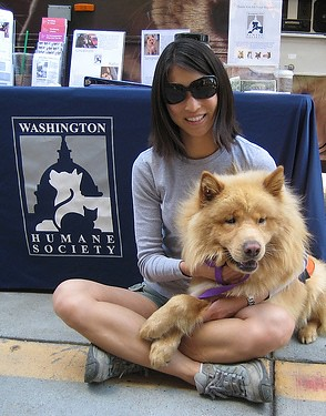 WHS Volunteer Holly Shick with a shelter dog at an outreac
