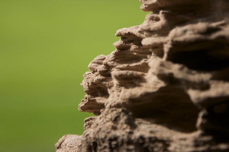 Castle Wall close up