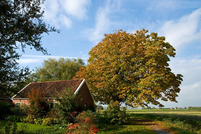 Autumn in Groningen, Netherlands