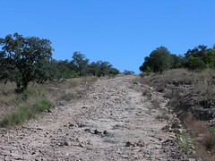 The highway - El camino saliendo de Ameca Vieja, Zacatecas, Mexico