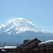 Japan / Mt. Fuji (Kawaguchiko)