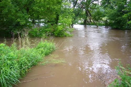 creek flooding dry rapids cedar