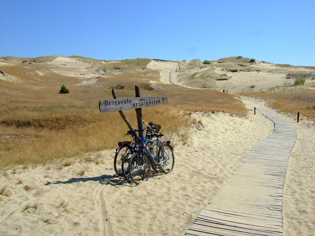 Curonian spit dead dune