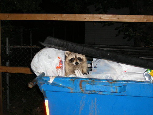 Just checking the trash
