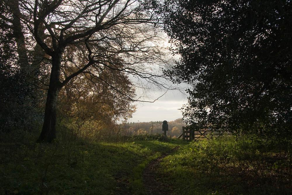 Ridden Corner