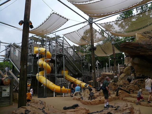 The Boneyard Play Area Animal Kingdom Discovery Island