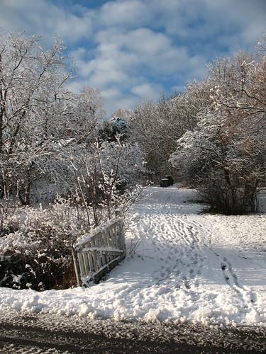 Winter wonderland | by syko Kajsa