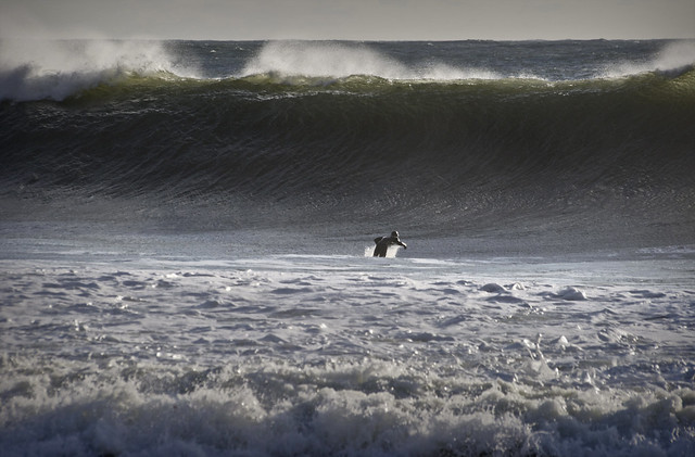 Any last requests - Winter swell at Freshwater Bay