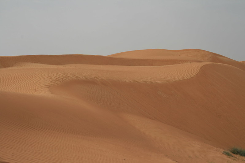 Desert 003