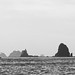 La Push Beaches 09-01-2008