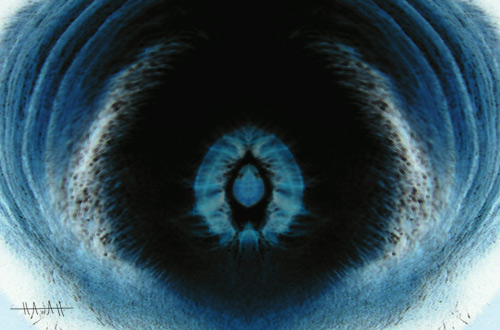 Eye Universe --- Pt. 1 | by everlutionary