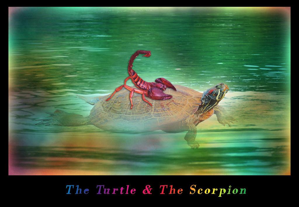 самый монструозно картинка скорпион и черепаха судя