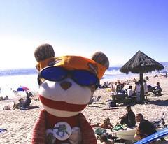 Sock Monkey in San Clemente   by Zen Cupcake