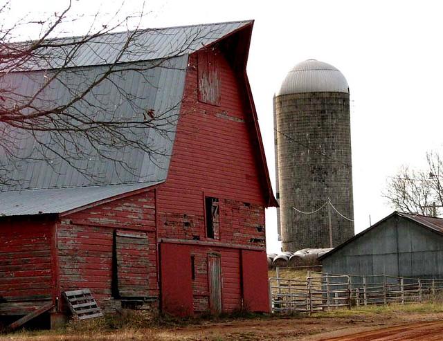 Nuttle Barn...