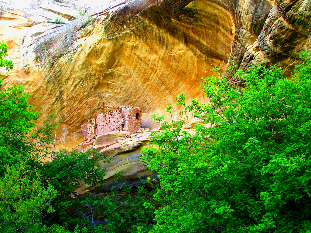 Cliff dwelling near Cave 7 by Red Dirt Dawg