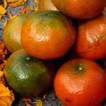 mandarins and marigolds