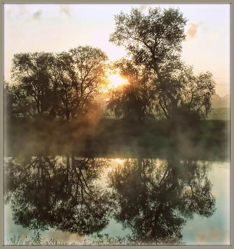 trees sun mist nature water fog sunrise reflections river geotagged mirrorser cloudsstormssunsetssunrises