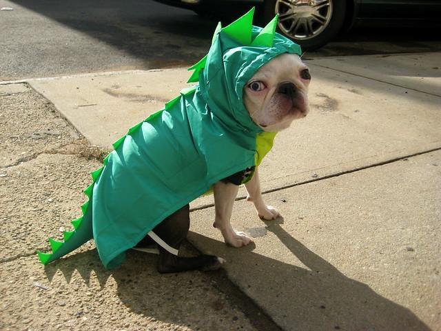 Looky at my new raincoat!