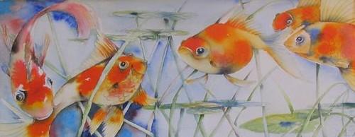 Goldfish   by Swandives