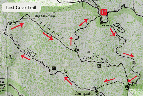 Lost Cove Trail Map by Wayfaring Wanderer