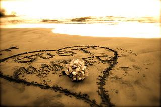Just Married Written in Sand   by jamiejchase