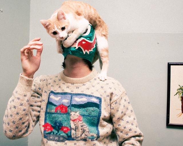 Cat Sweaters
