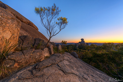park morning trees winter sky sphinx sunrise dawn bush nikon rocks turtle walk australia national queensland granite nikkor gitzo wattle wallangarra rrsbh55 1424mmf28 d800e