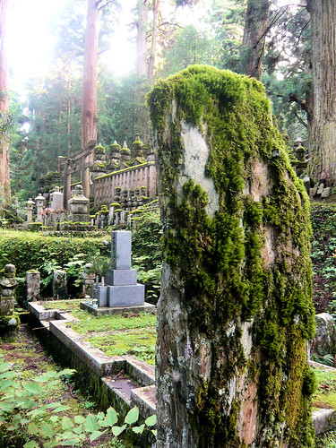 Moss on dressed stone - Okunoin cemetery | by DocChewbacca