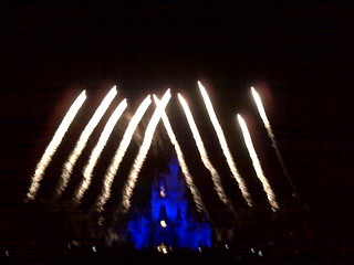 WISHES Fireworks | by Erin *~*~*