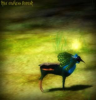Cradle: Peacock