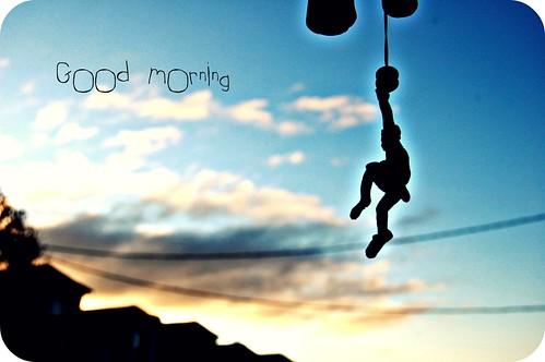 morning sunrise monkey goodmorning picnik windcarm