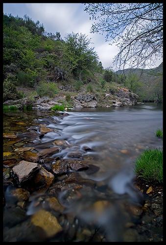 longexposure tree portugal water river relax rocks silky mondego trinta videmonte