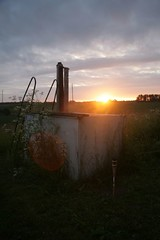 Selbstbau-Pool im Morgenlicht   by Lord Roetel
