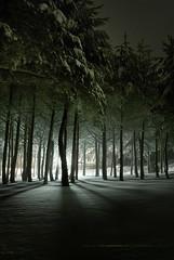 frozen light in a snow weekend, MANZANEDA ☃   by Paulo Brandão