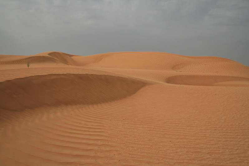 Desert 032
