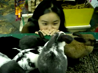 Bunny-watching