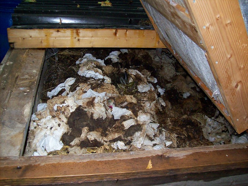 External composting for faeces and toilet paper
