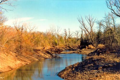 park trees arlington river stream texas shrubs trinityriver
