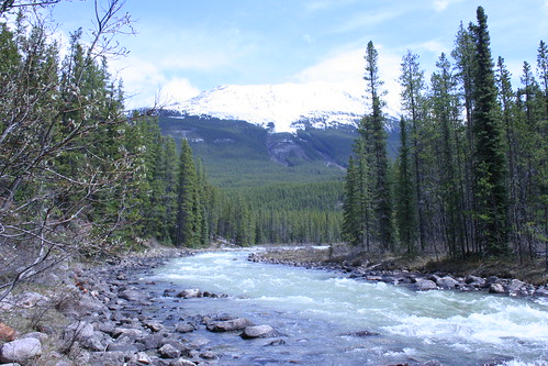 Athabasca River | by crawdrewford